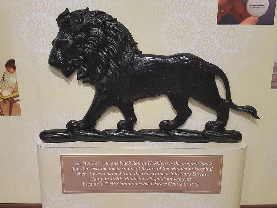 08 Black Lion