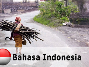 Indonesian_inequality_ba