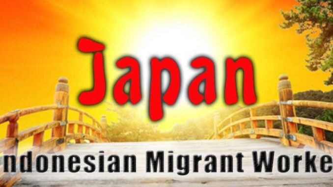 Indonesian Migrant Workers In Japan Typology And Human Rights Kyoto Review Of Southeast Asia