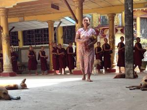 Myanmar_temple_dogs