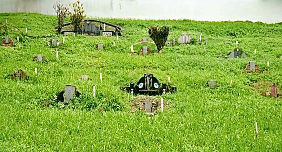 Graves of different sizes affected by the expressway, courtesy of Martina Yeo. Only some have been tended to over the years.
