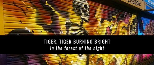 Tiger_burning_banner