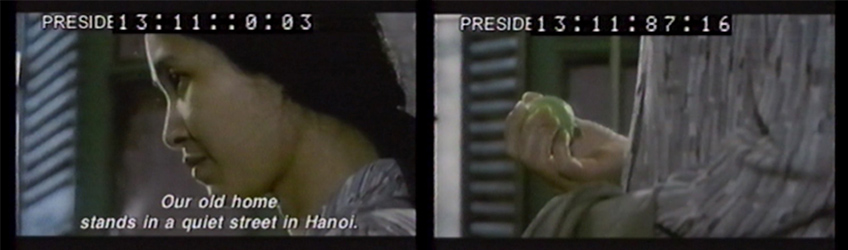 "(Figs. 2 and 3): ""Guava Memory"" (Dang Nhat Minh, The House of Guava, 35 mm, 1999)"