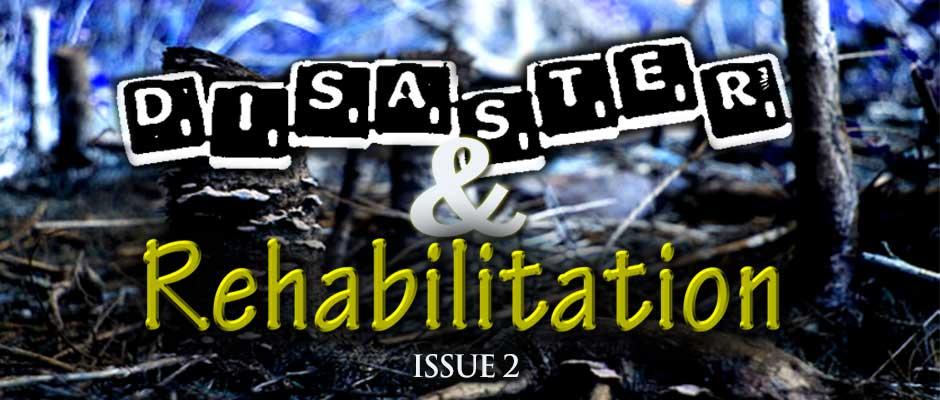 issue_2_banner
