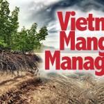 vietnam_mangrove